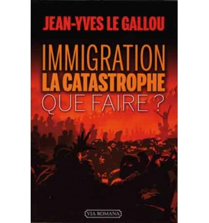 Immigration: la catastrophe. Que faire