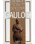 B.A.-BA Gaulois